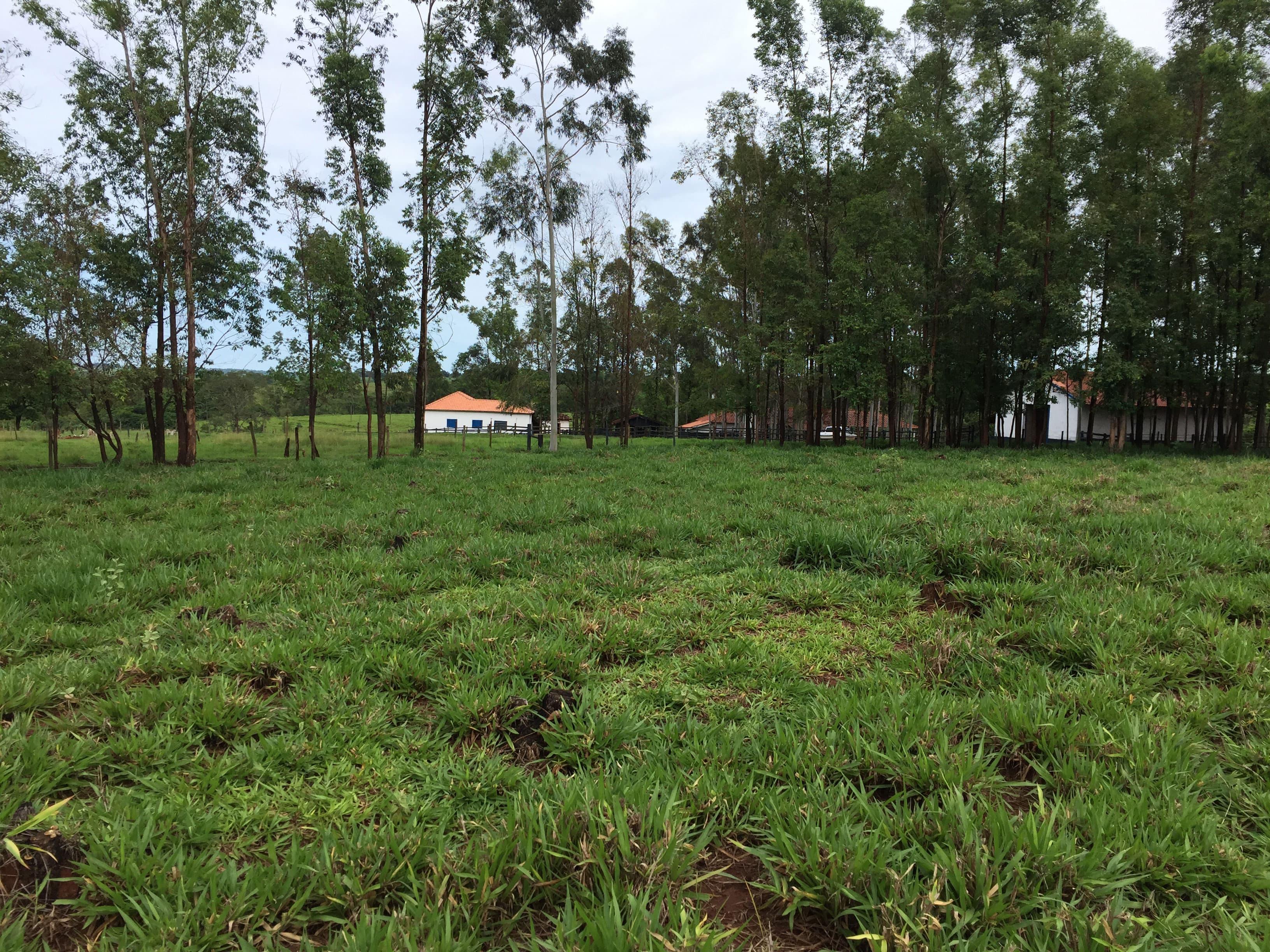 Imagem Fazenda Córrego Bonito